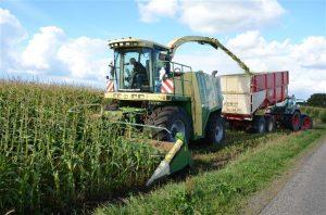 Agrifoto - Mais hakselen Noord-Brabant